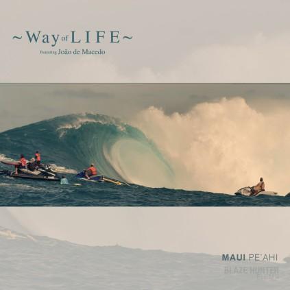 way_of_life_1
