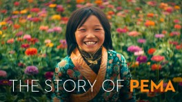 the_story_of_pema_1