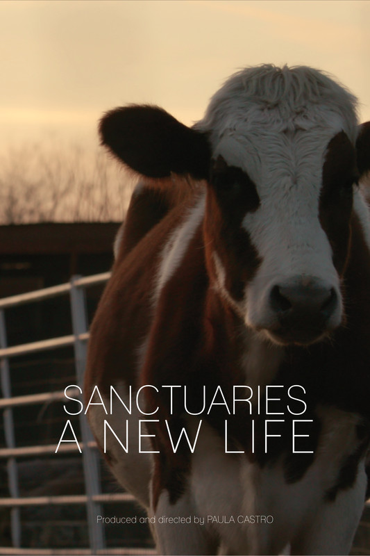 sanctuaries_a_new_life_movie_poster