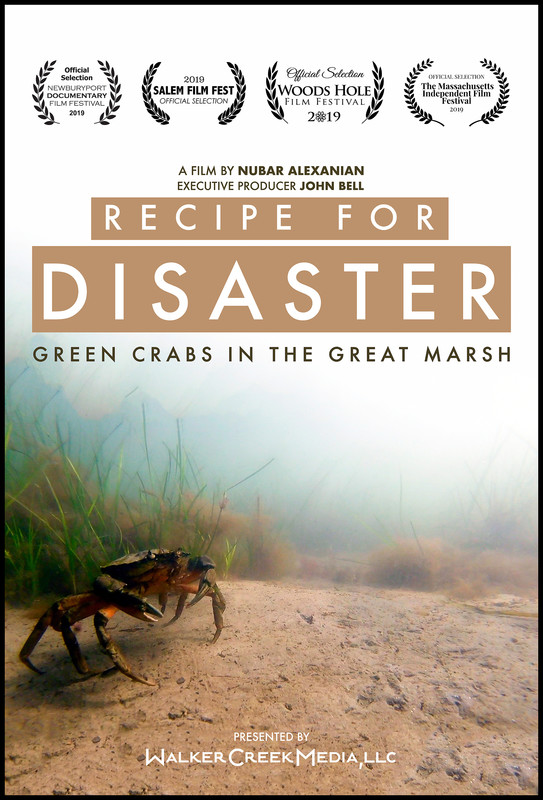 recipe_for_disaster_movie_poster