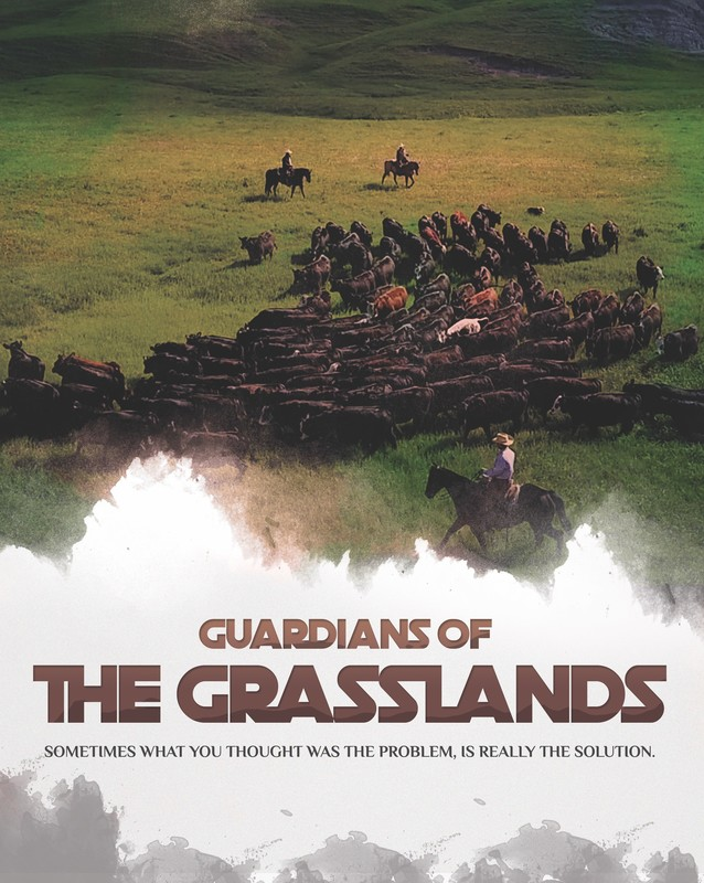 guardians_of_the_grasslands_movie_poster