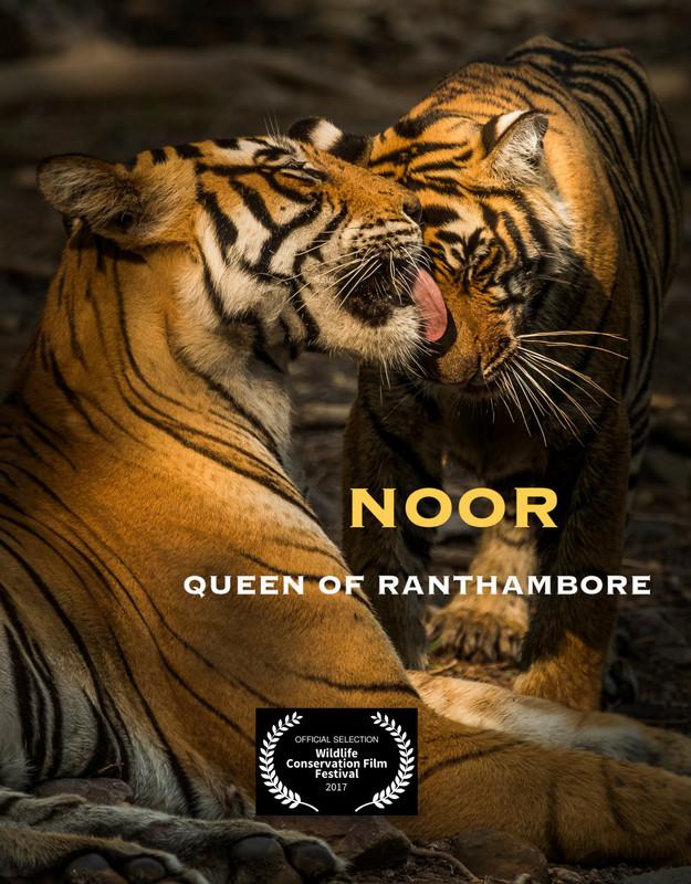 noor_movie_poster